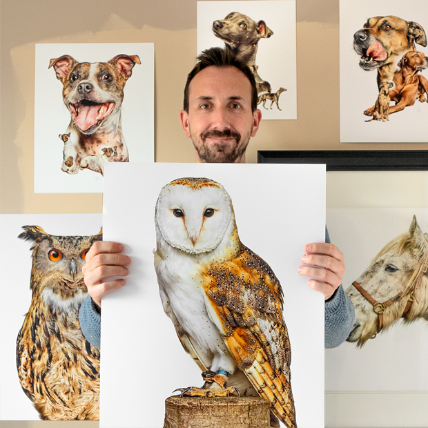 Limited edition print of a Barn Owl